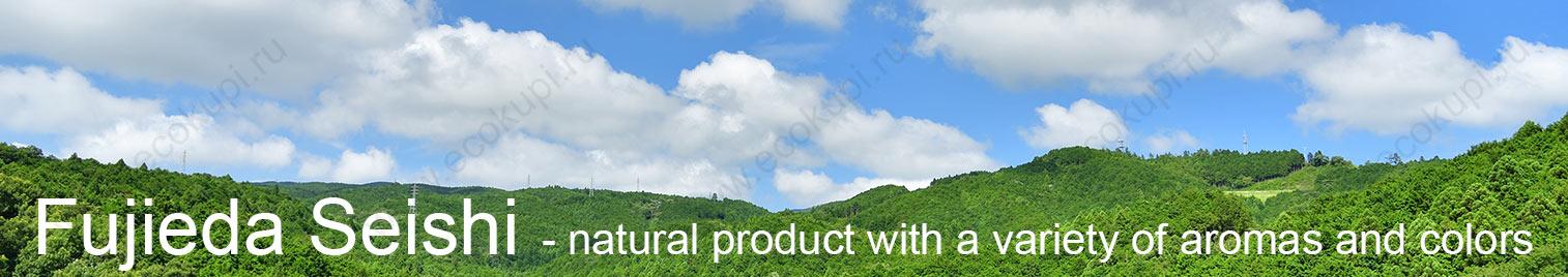 купить туалетная бумага из Японии Fujieda Seishi высокого качества, доставка по России, самовывоз из ПВЗ Боксберри СДЭК Почтой России, выгодные цены, отзывы